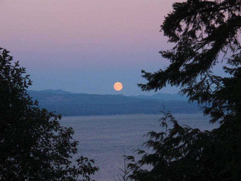 full-moon-from-house.jpg