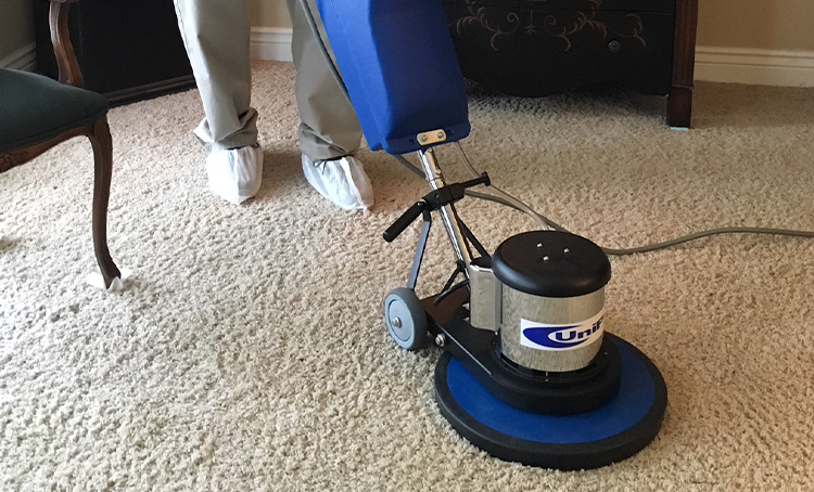 carpet cleaning 1.png