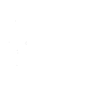 Cardinal Carpet Cleaning | St. Louis, MO