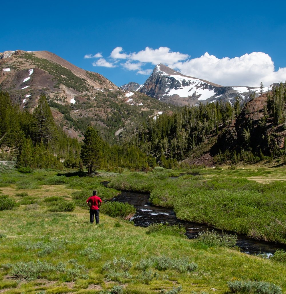 Yosemite%2BMeadow%2BView-Portfolio.jpg