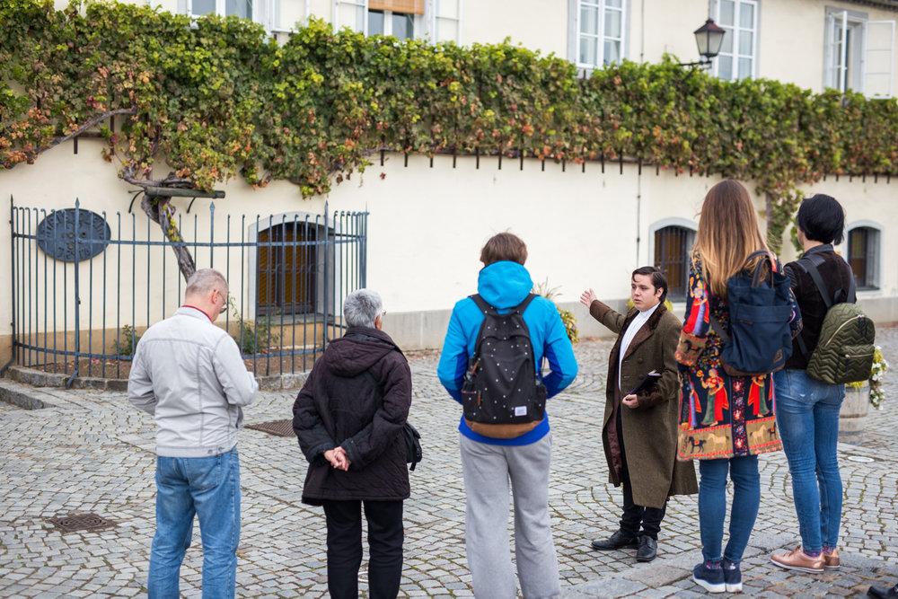 KultUrni sprehod z Vinom.jpg
