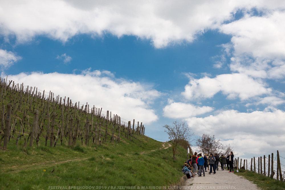 festival sprehodov-4dan_Boštjan Selinšek (40).jpg