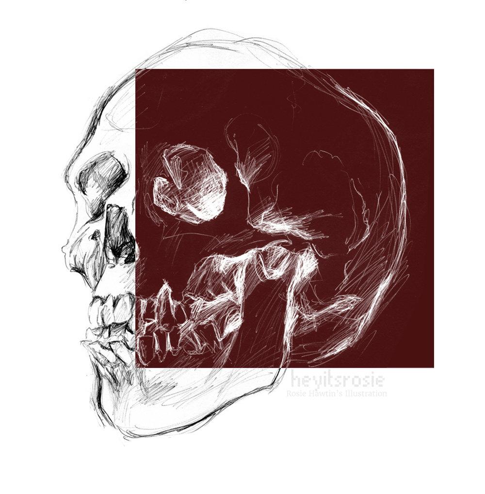 Skull Print Design