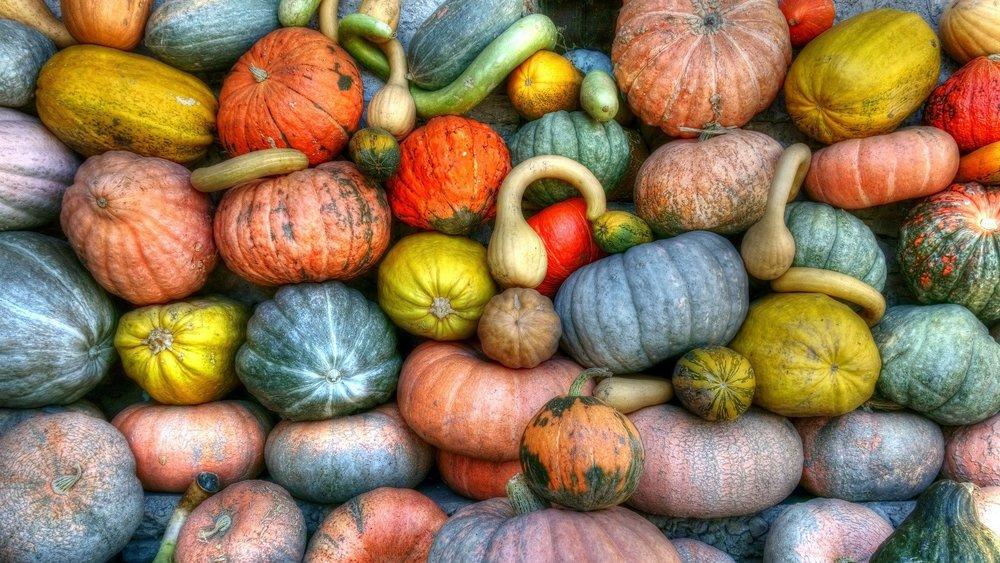 Choisissez des produits cultivés au Nouveau-Brunswick