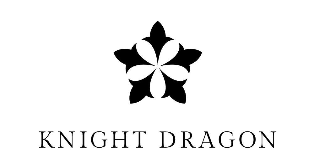 knight dragon.jpg
