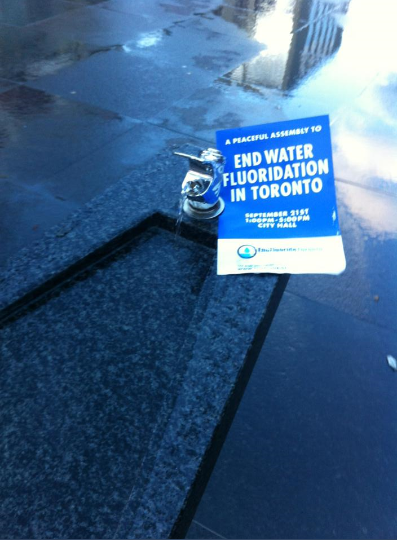 End Fluoride Toronto Flyer