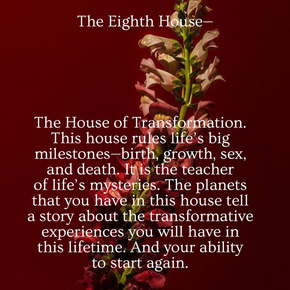 8_Eighth_House.jpg