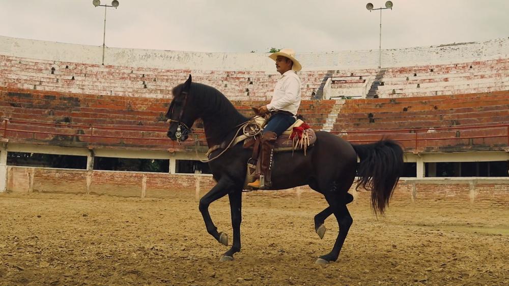 Mexican Charro cowboy