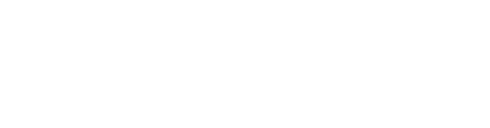 P&C Group-logo_WHT3.png