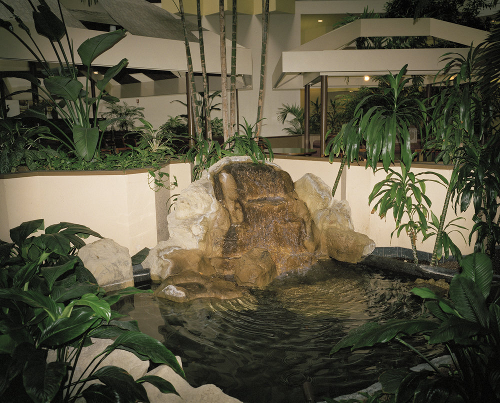 indoor nature facade.jpg
