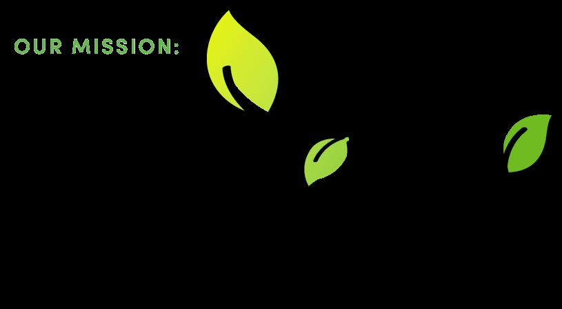 CV Script Logo Black (1).png
