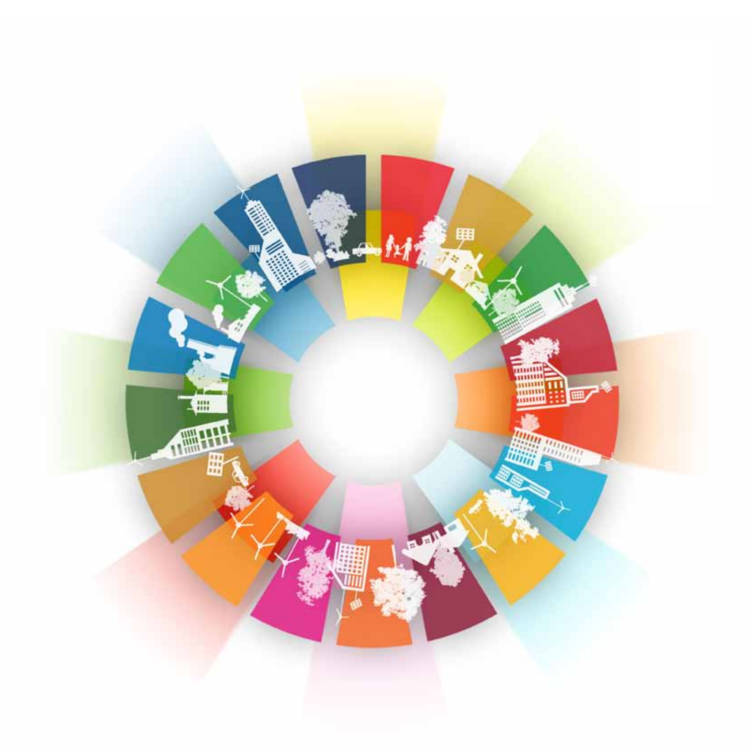 undp_report_from_mdgs_to_sdgs_2.png