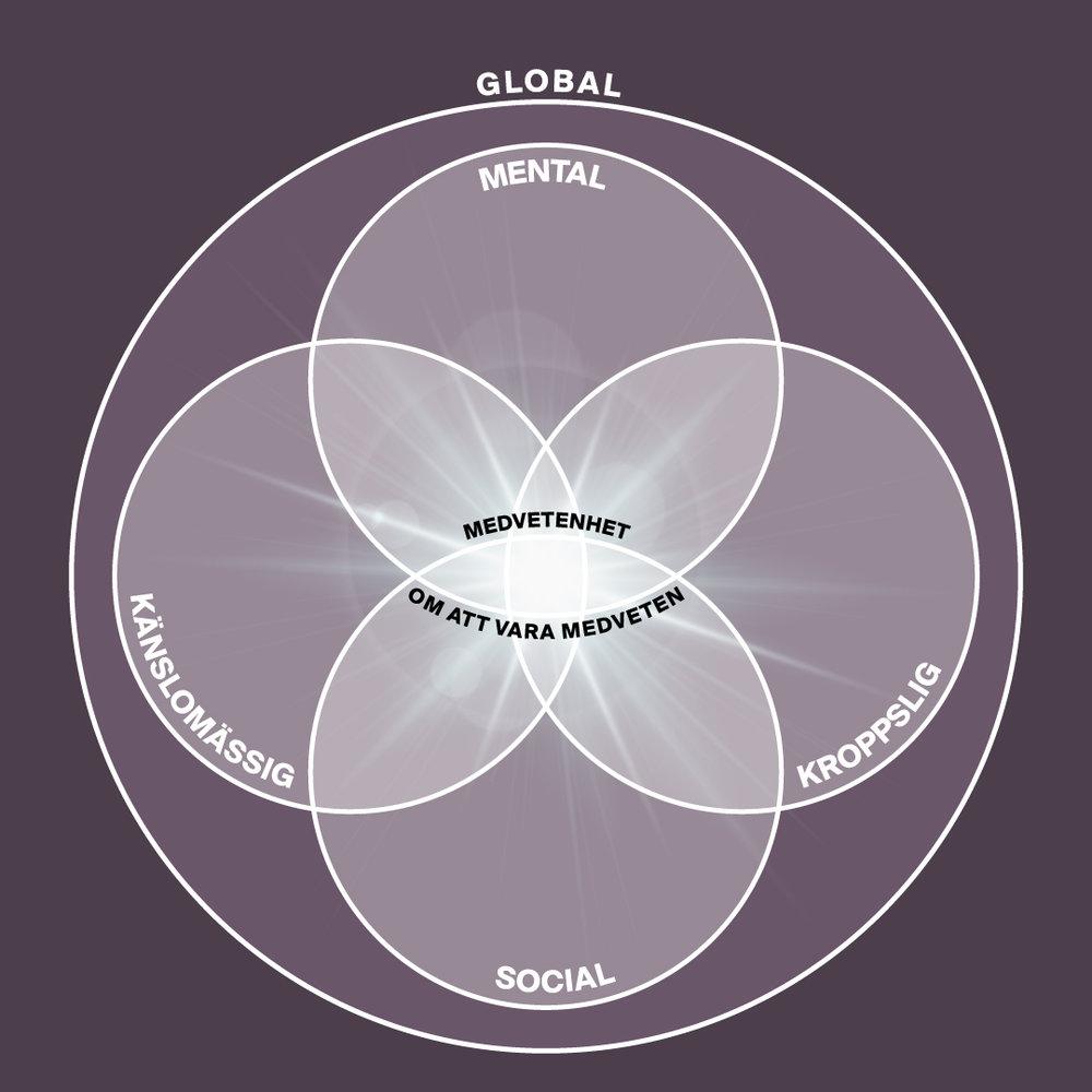 - Inom CARE tar vi ett lite bredare grepp kring medvetenhetsträning och inkluderar de sociala och globala domänerna - våra relationer, vårt samhälle och planeten.Först utvecklar vi vår förmåga att uppfatta och särskilja innehållet i de mentala, kroppsliga och känslomässiga domänerna. Insiktsmeditation hjälper oss sedan att förstå deras orsakssamband och samspel så att de kan integreras i medvetandet. I denna process utforskar vi även våra behov och värderingar.I den sista domänen tränar vi förmågan att vila i medvetenhet om att vara medveten, ofta kallad den högsta nivån av meditation. Att ha tillgång till detta varande möjliggör en mer kärleksfull relation till sig själv, till andra människor och till världen i stort.