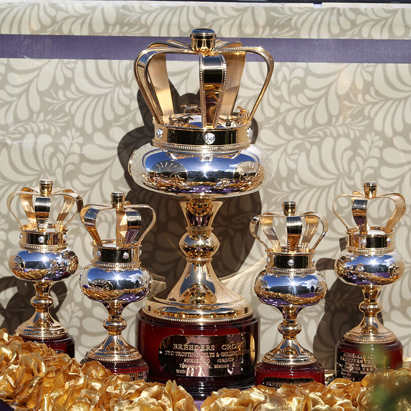 Breeders Crown Trophy Aus (800px).jpg