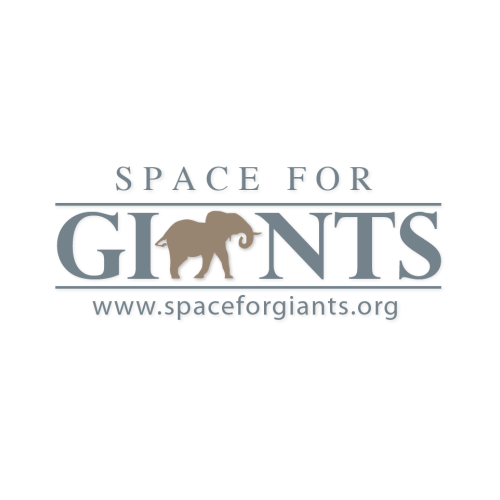 Space for Giants -    link