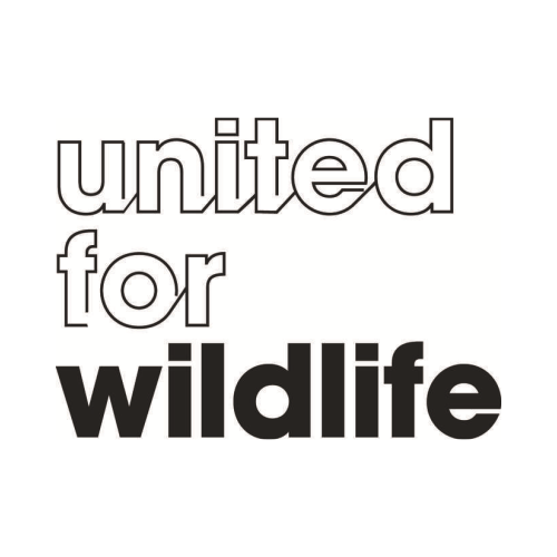 United for Wildlife -    link