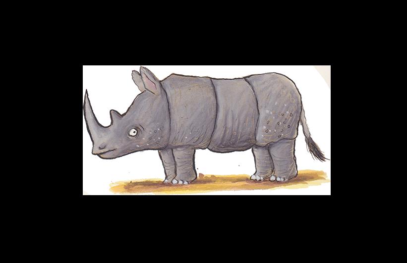 AS-rhino-102ppi.png