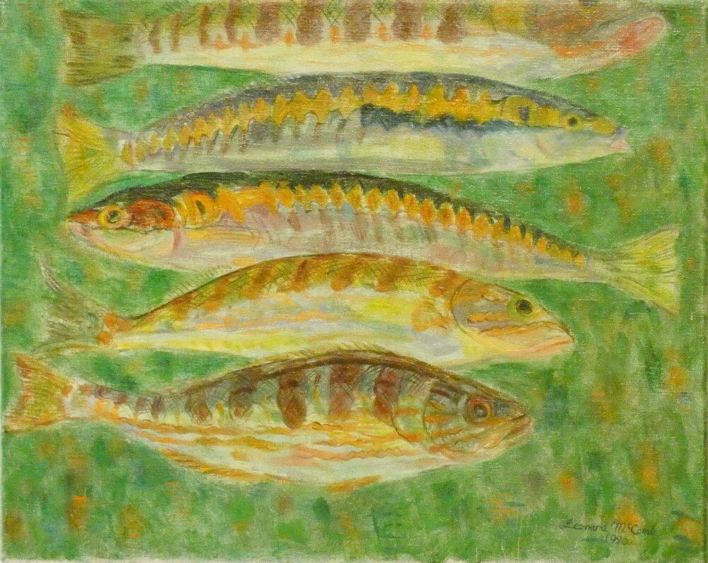 Leonard McComb_Fish, Cyprus (2).png
