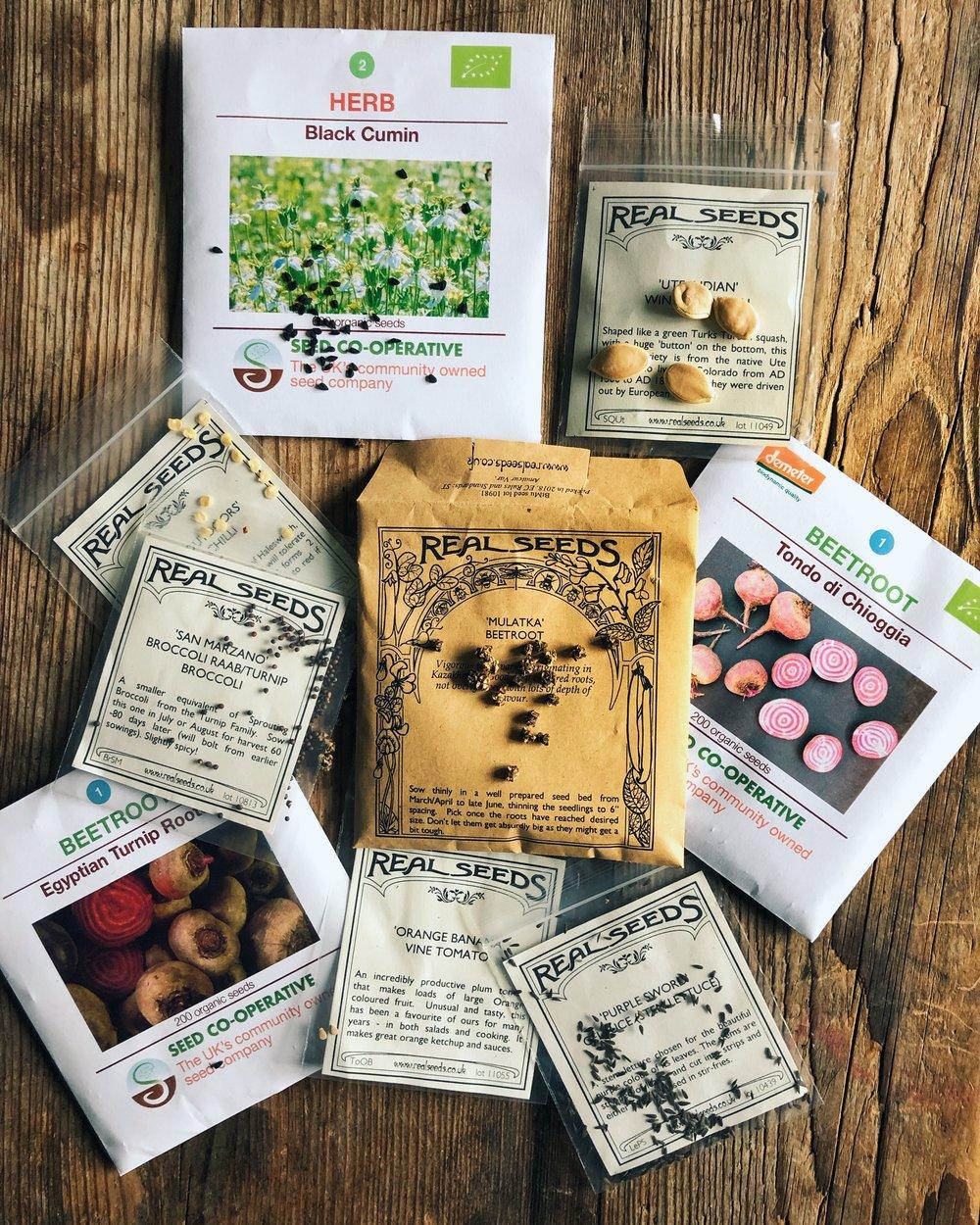 seedpackets.JPG