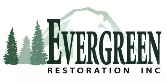 """november - Evergreen RestorationJust before Thanksgiving this year, we were approached by Evergreen Restoration of Puyallup, wondering if we knew a family they could bless with a holiday meal. Of course, we said, """"Yes!"""" Owner Dianna Sims graciously and generously provided a lovely meal, with extra special touches, to one of our client families. And, two of our own volunteers were able to deliver it. Thanks for your commitment to bettering our community, Evergreen Restoration!"""
