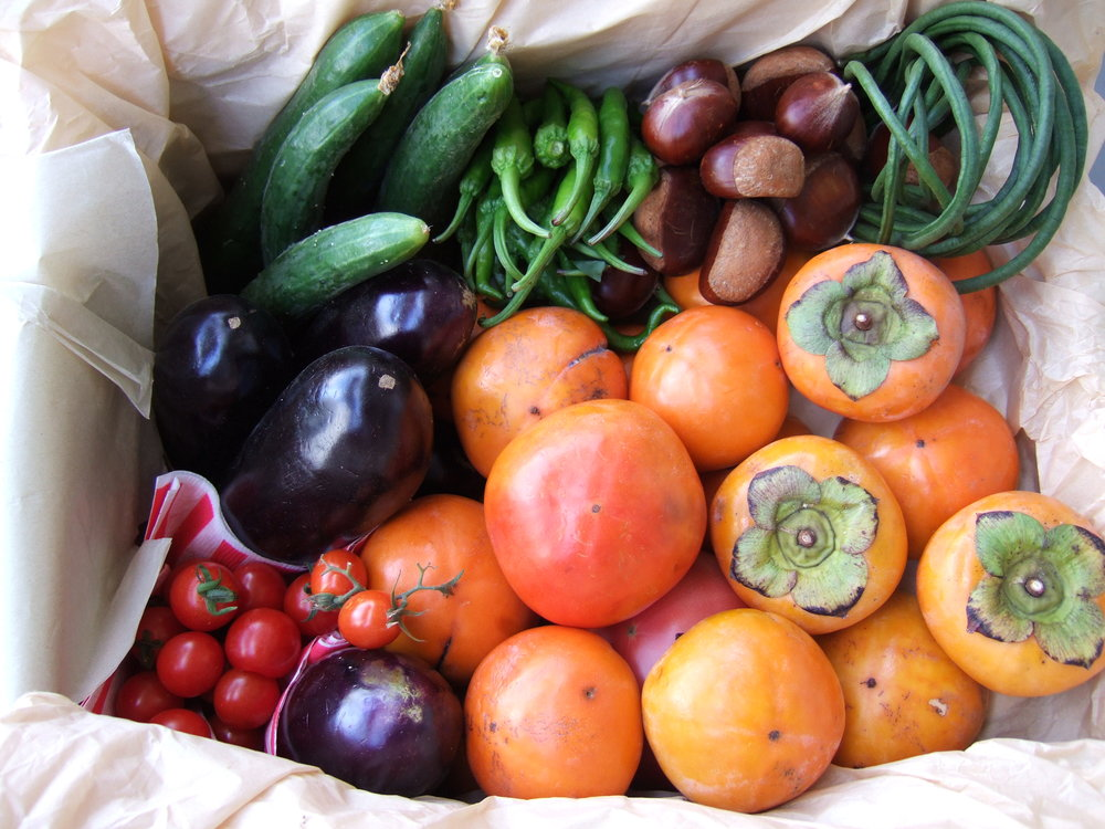 fruit and veggies.jpg