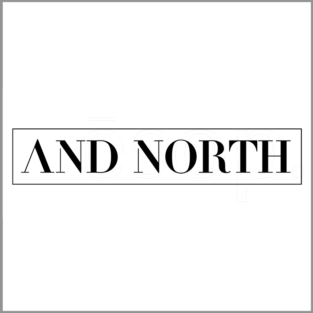 AND NORTH LOGO.png