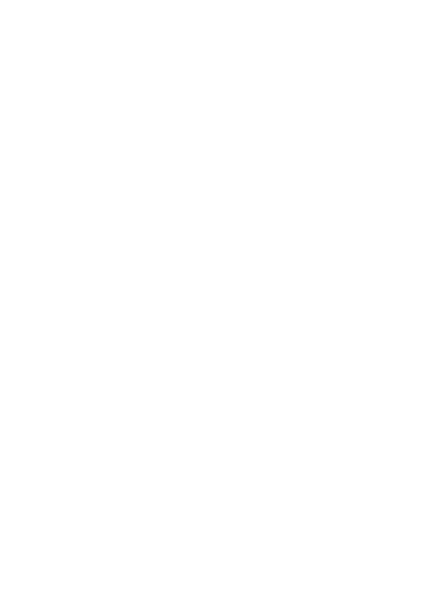 The Band Junkies