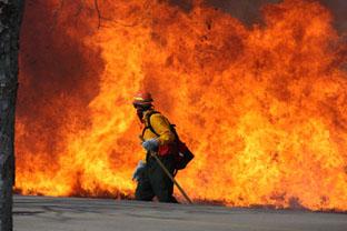 Fire Teamleadership - West TN - Ron ElderMiddle TN - Steve WardEast - Eric Huey