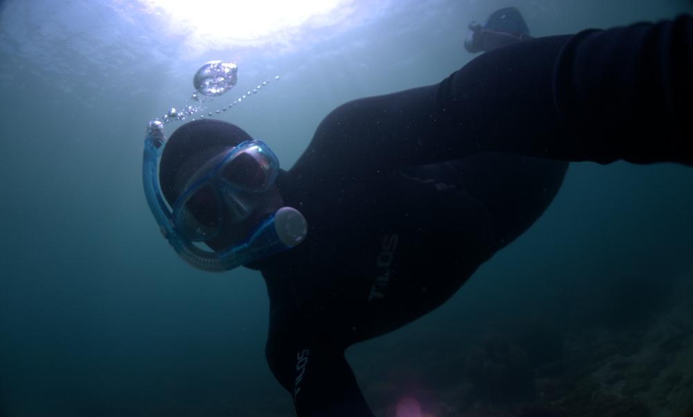SERGIO CAMBRONERO   DIRECTOR GENERAL   Sergio es biólogo marino especializado en manejo de recursos marinos y dulceacuícolas, trabaja como oceanógrafo en la Universidad Nacional. Desde 2015 se desenvuelve como camarógrafo sub-acuático y productor de comunicación científica. Su visión por integrar la ciencia y el arte lo llevan a co-fundar el colectivo PELAGOS en 2017.