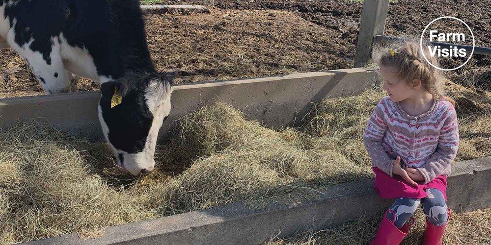 Happy Cow Creamery & 12 Aprils Dairy in Pelzer, SC — Farm