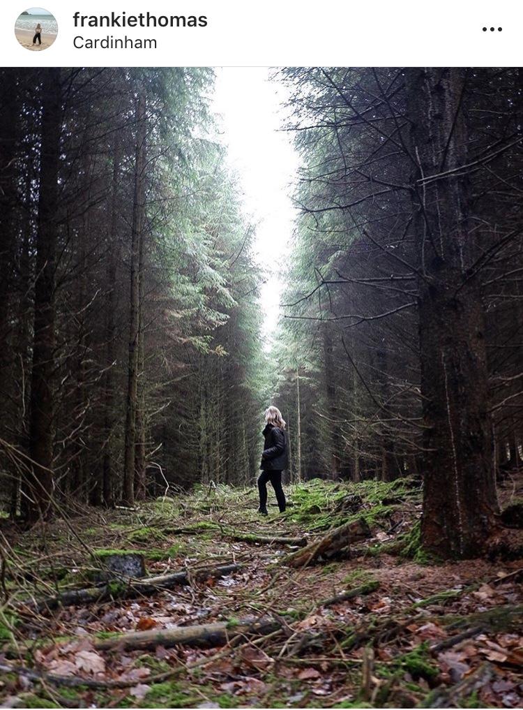 Cardinham Woods, Cornwall