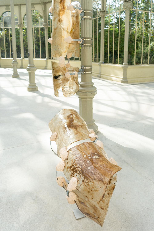 CaballeroCosmica-ExhibitionsPhoto-PalacioDeCristal3.jpg