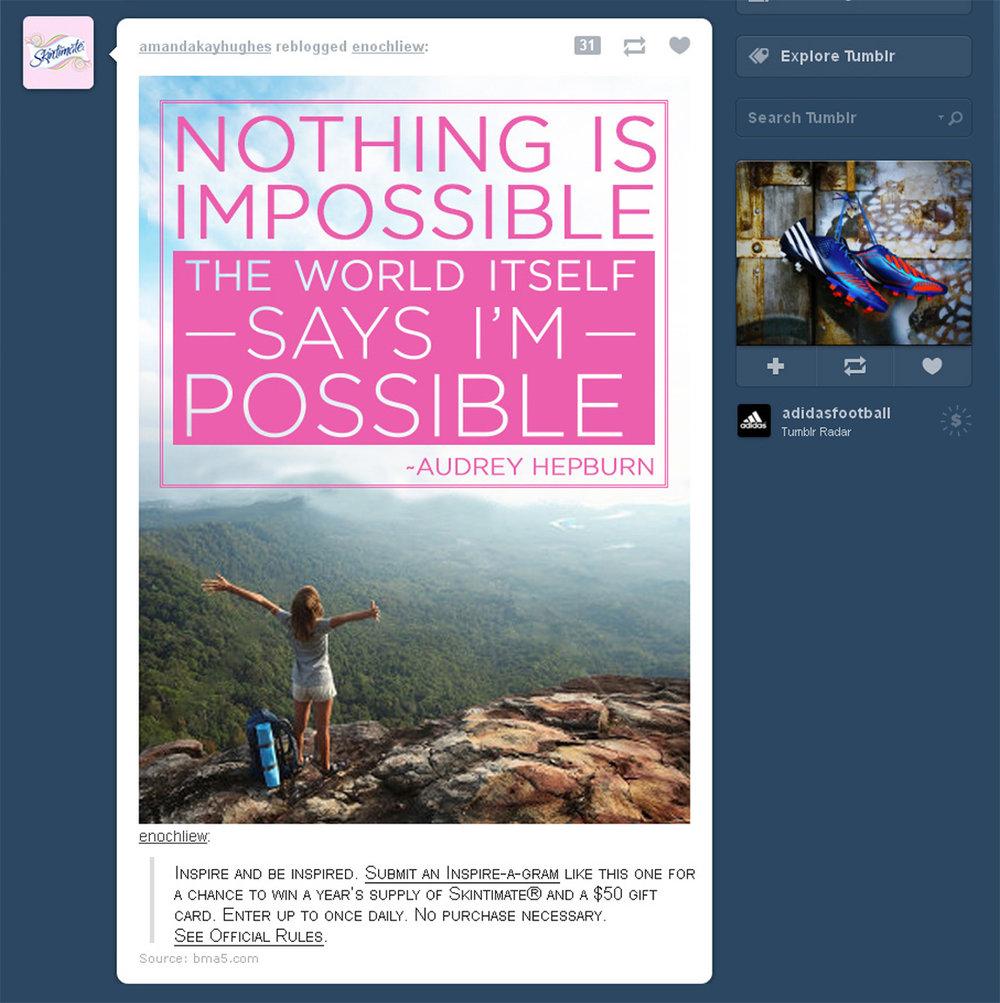 SKN-inspiration-notimpossible.jpg