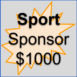 Sponsorship Overview _ Sport.png