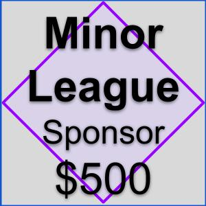 Sponsorship Overview _ Minor League.jpg