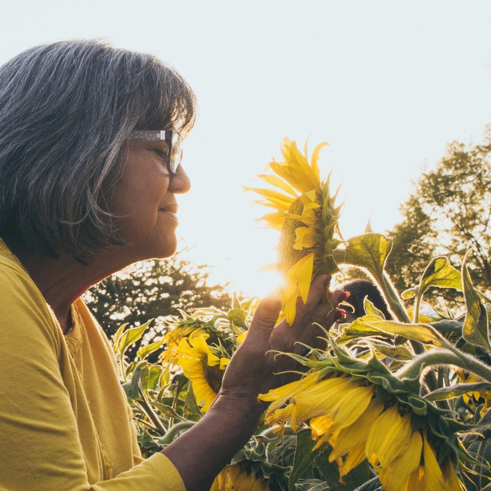 Stop & Smell The Sunflowers -