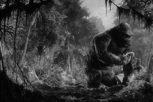 Kong+03.jpg
