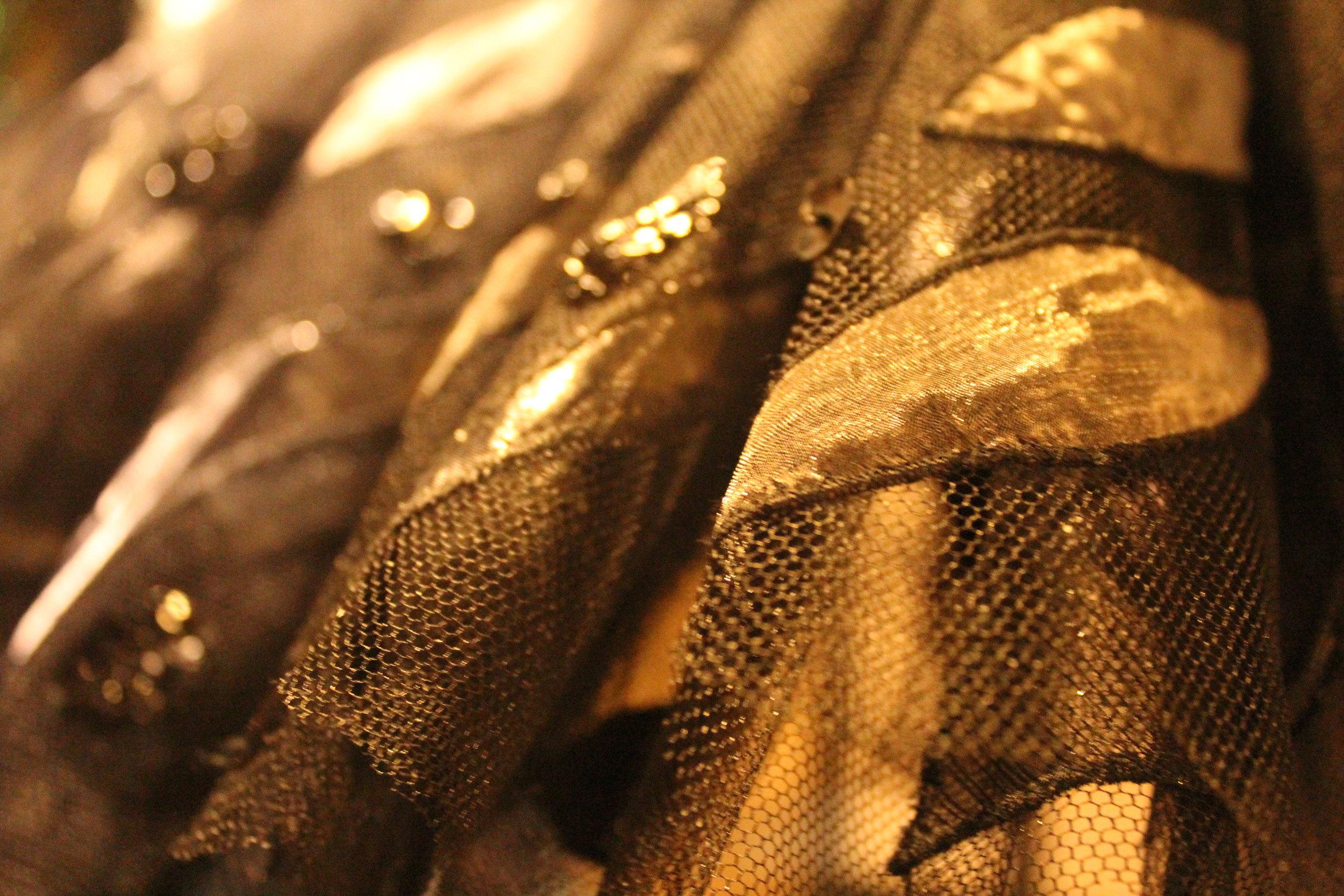 Costume detail, the Black Swan from Swan Lake