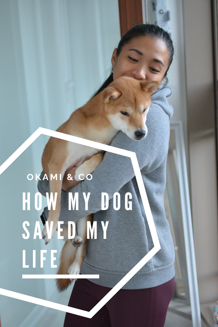 How my dog saved my life.png