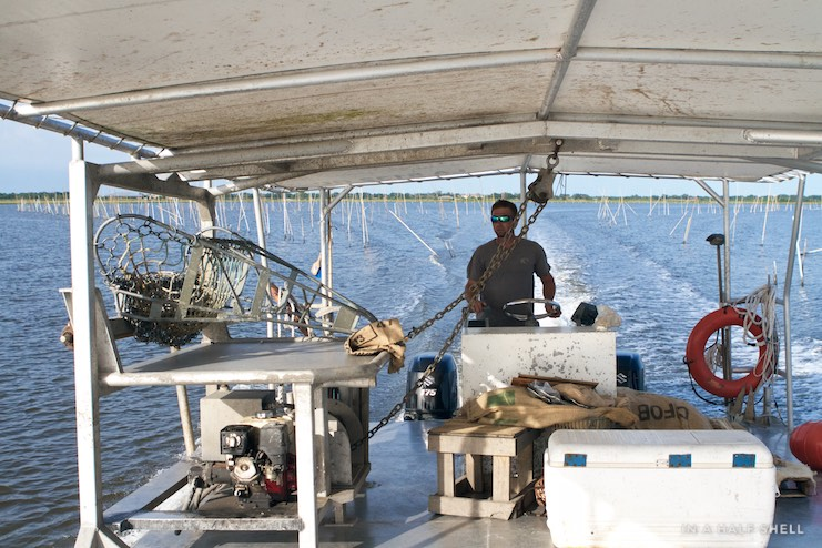 IAHS-2015-07-10-Gulf-Oyster-Tour-IMG_4150.jpg