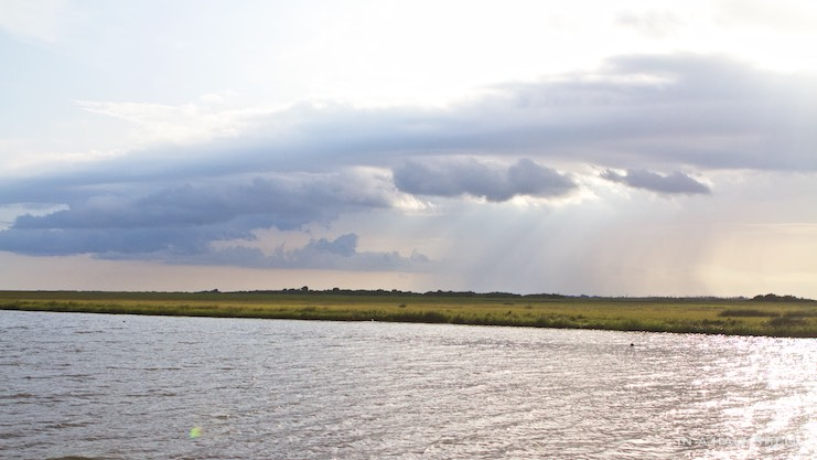IAHS-2015-07-10-Gulf-Oyster-Tour-IMG_4164.jpg