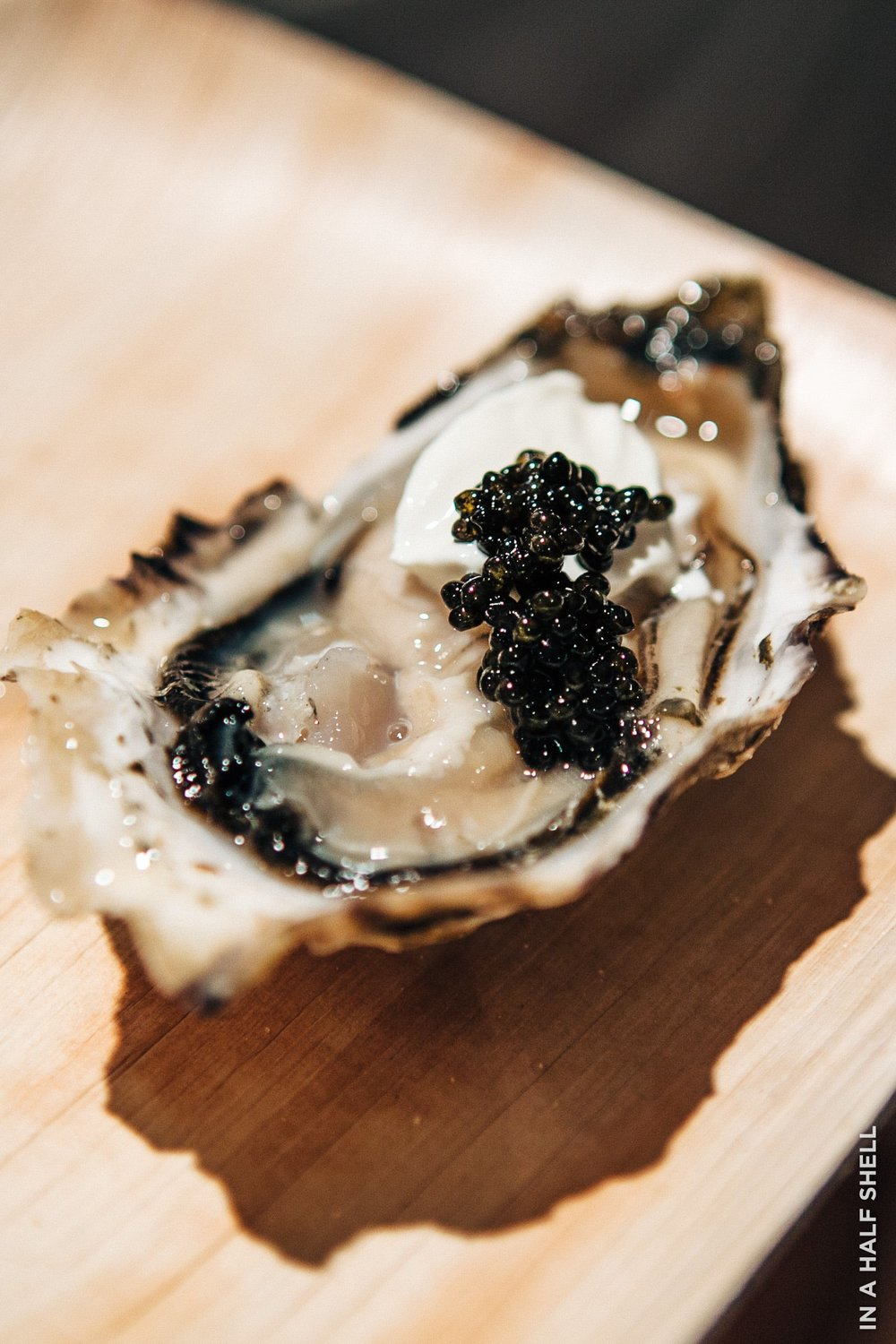 InAHalfShell-2011-OysterChampagneParty-5.jpg