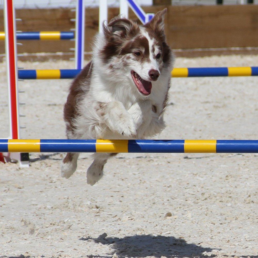 duffy+jump.jpg