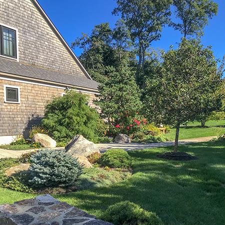 Landscape Maintenance -
