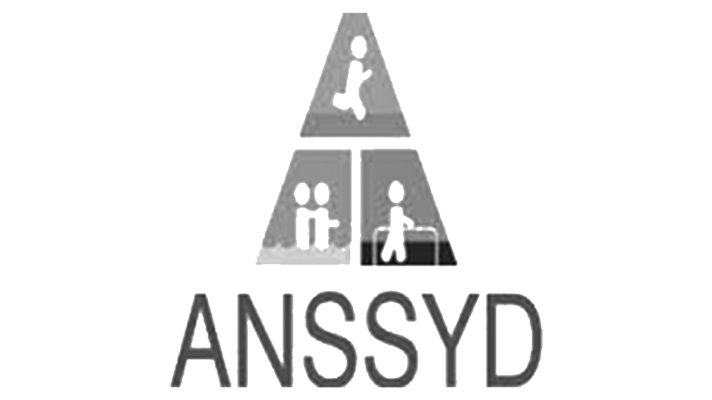 ANSSYD BN.png