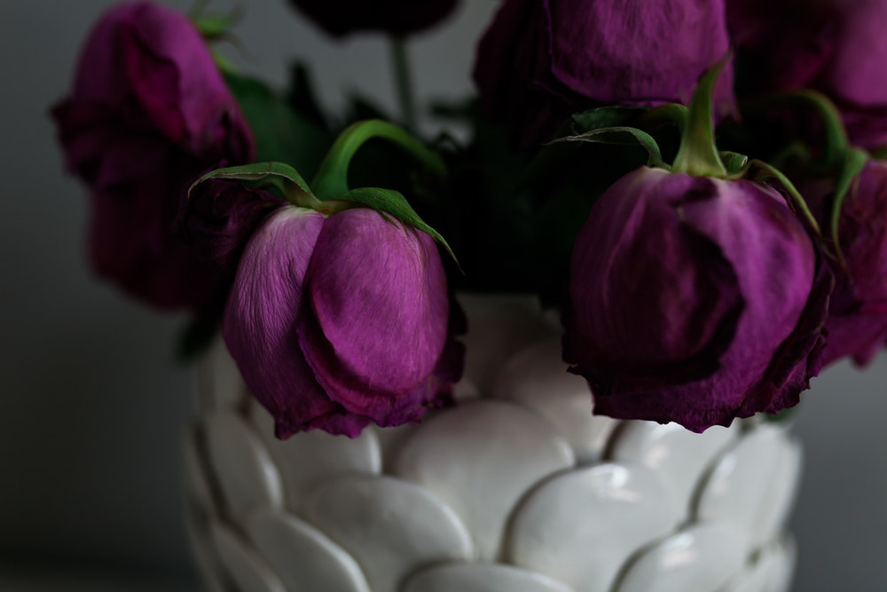 Roses30MINUTES-4.jpg