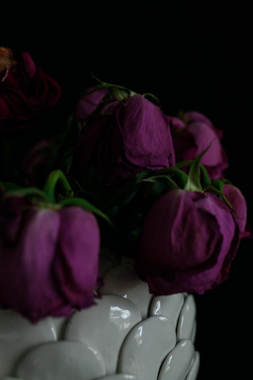 Roses30MINUTES-6.jpg