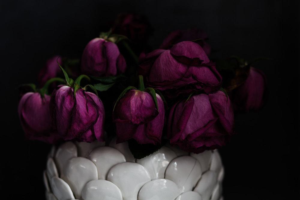 Roses30MINUTES-15.jpg