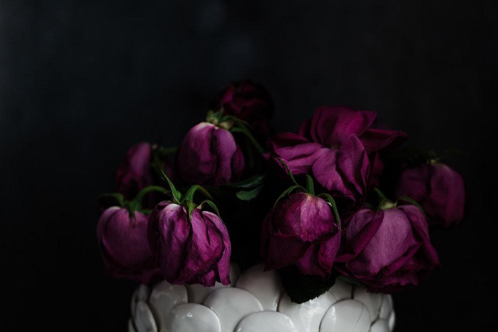 Roses30MINUTES-16.jpg