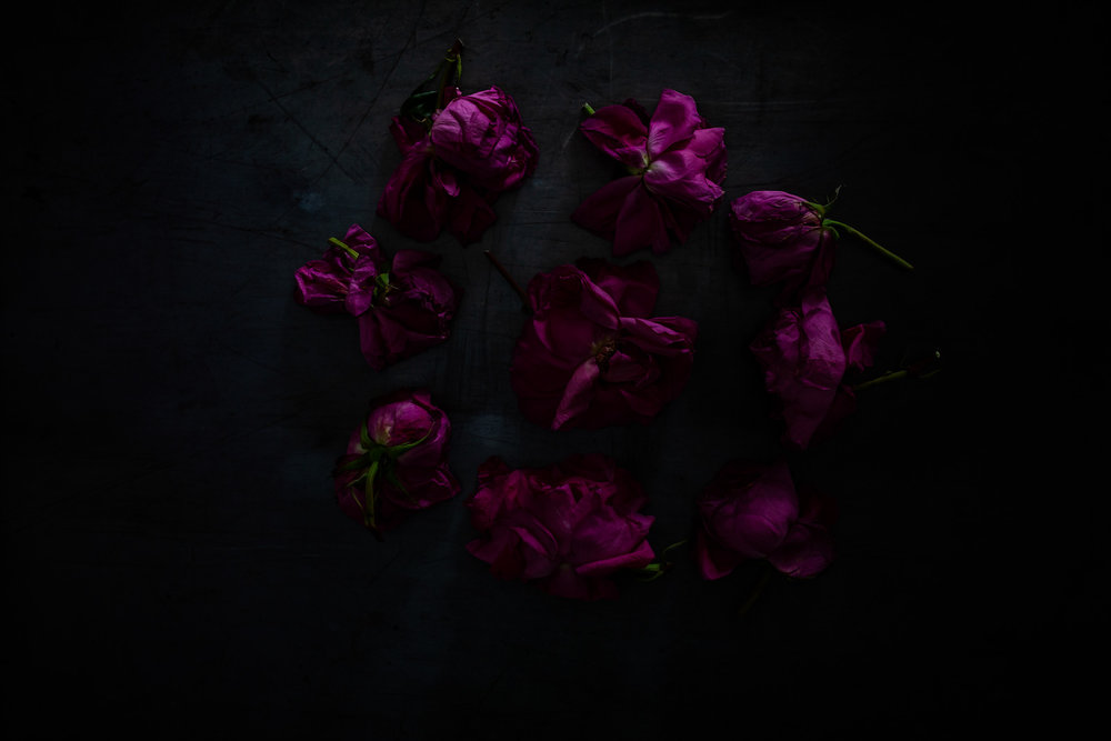 Roses30MINUTES-17.jpg